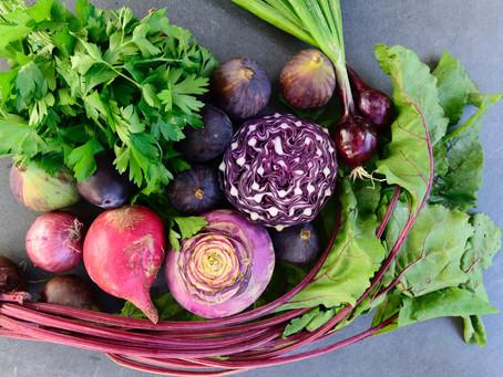 Les 6 micronutriments essentiels pour notre système immunitaire
