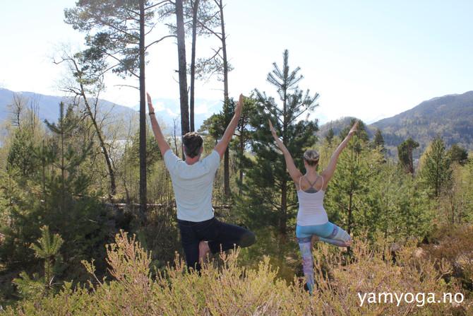 Nyt sommeren på YamYoga!