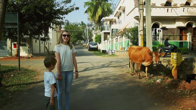 Reisebrev 1 fra Mysore, India