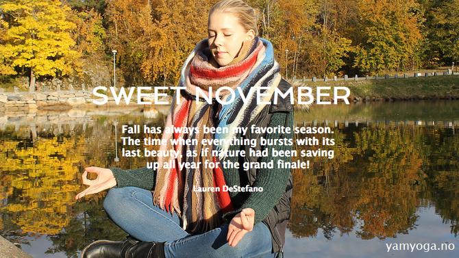 Sweet November - vi feirer med nyheter og tilbud!