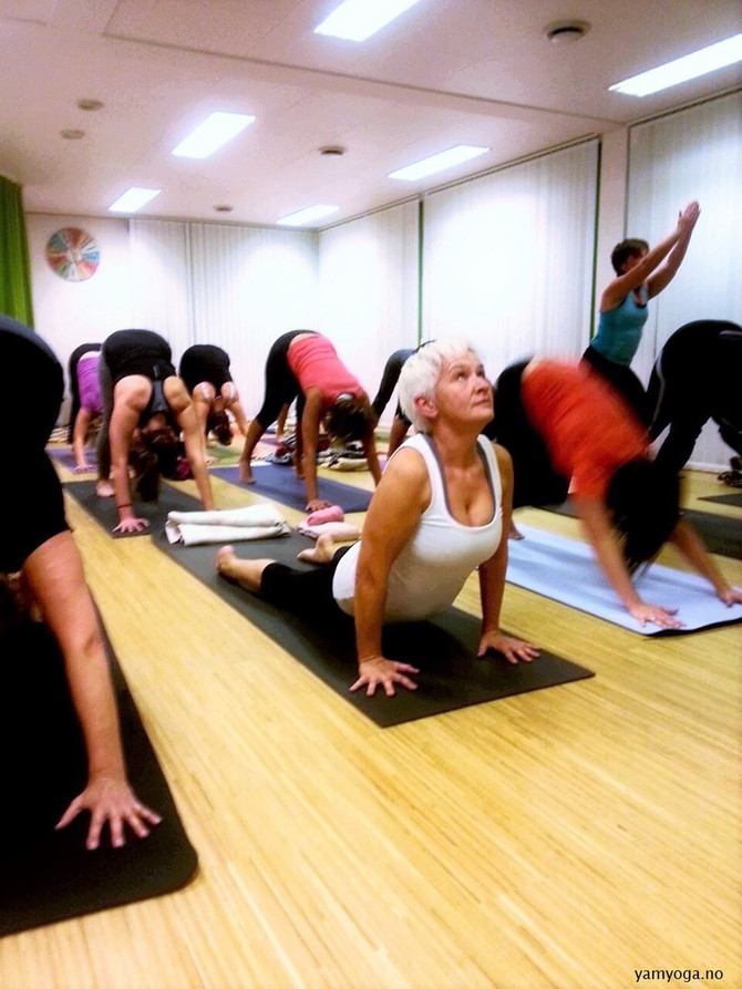 Mysore klasser - opplev meditasjon i bevegelse
