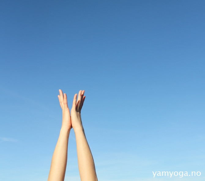 Morgenklasser på YamYoga - få en god start på dagen med oss!