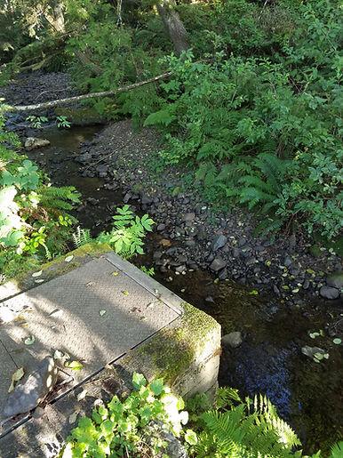 Asbury Creek intake