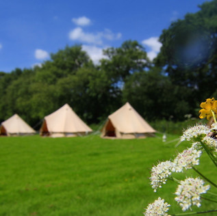 4&5mtr bell tents.jpg