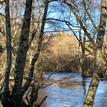 riviertje voor het huis