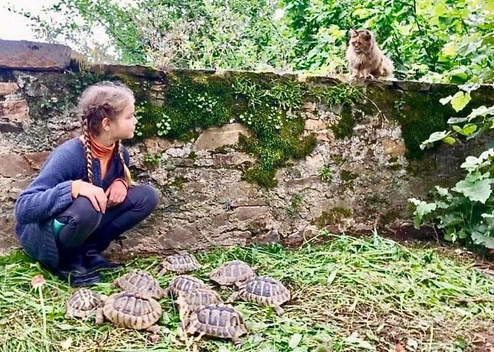 schildpaddencontrole