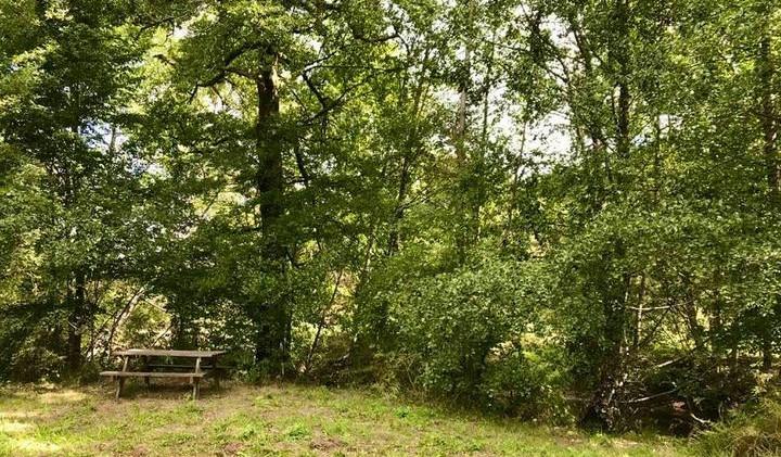 nieuwe picknickplek langs de rivier