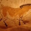 Wereldberoemde prehistorische grotten in de buurt