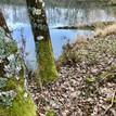 beekjes, riviertje, bronnen, poelen, vijvers, meertje, kwel, moeraszones; alle zoetwatervormen zijn vertegenwoordigd op La Faye