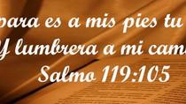 Academia Bíblica