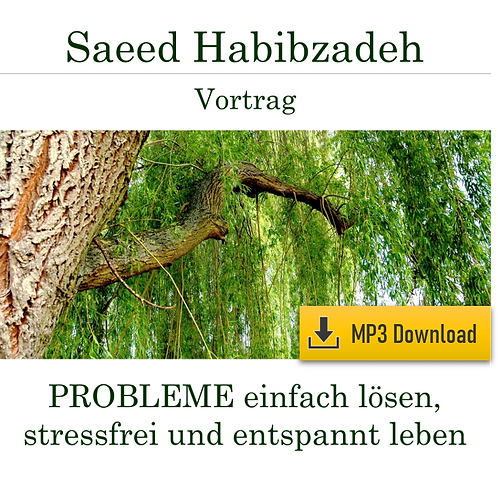 Lecture (MP3): Simply solve PROBLEMS, live stress-free and relaxed