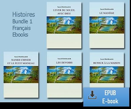 E-Books: Tous les 5 histoires (Français) (EPUB)