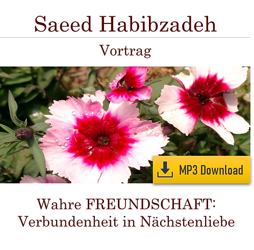 Lecture (MP3): TRUE FRIENDSHIP - Solidarity in charity