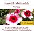 Saeed Habibzadeh_Beyond Matrix Publishing_Lectures_2