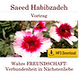 Cover Freundschaft MP3 Download.png