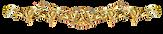 Saeed Habibzadeh Beyond Notes - Logo