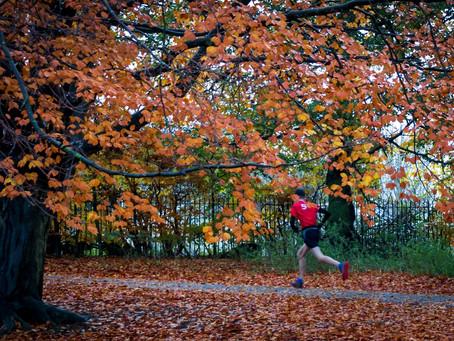 Sandall Park Parkrun November 2019
