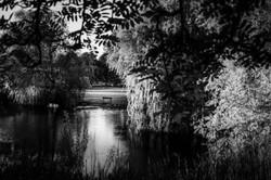 Sandall Park Doncasteer