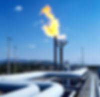 The Newtron Group Gas Transmisson