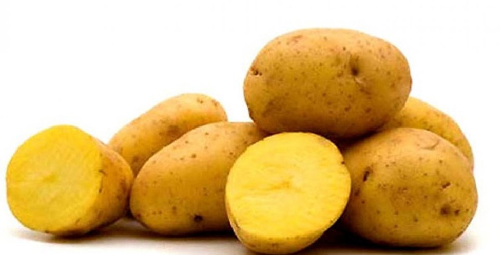 Yukon Potatoes - 10LB bag