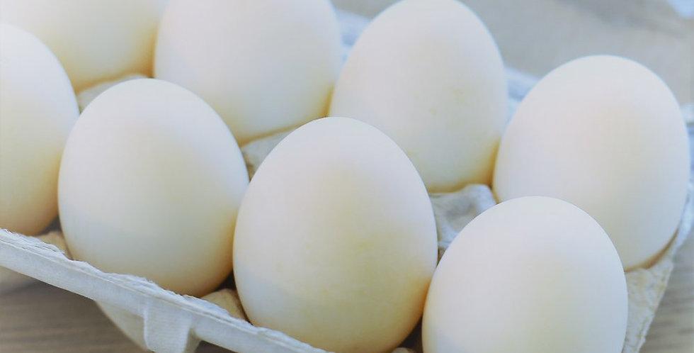 Duck Eggs - 1/2 Dozen