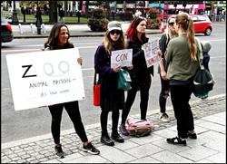 2019-9-28-zoo protest4.jpg