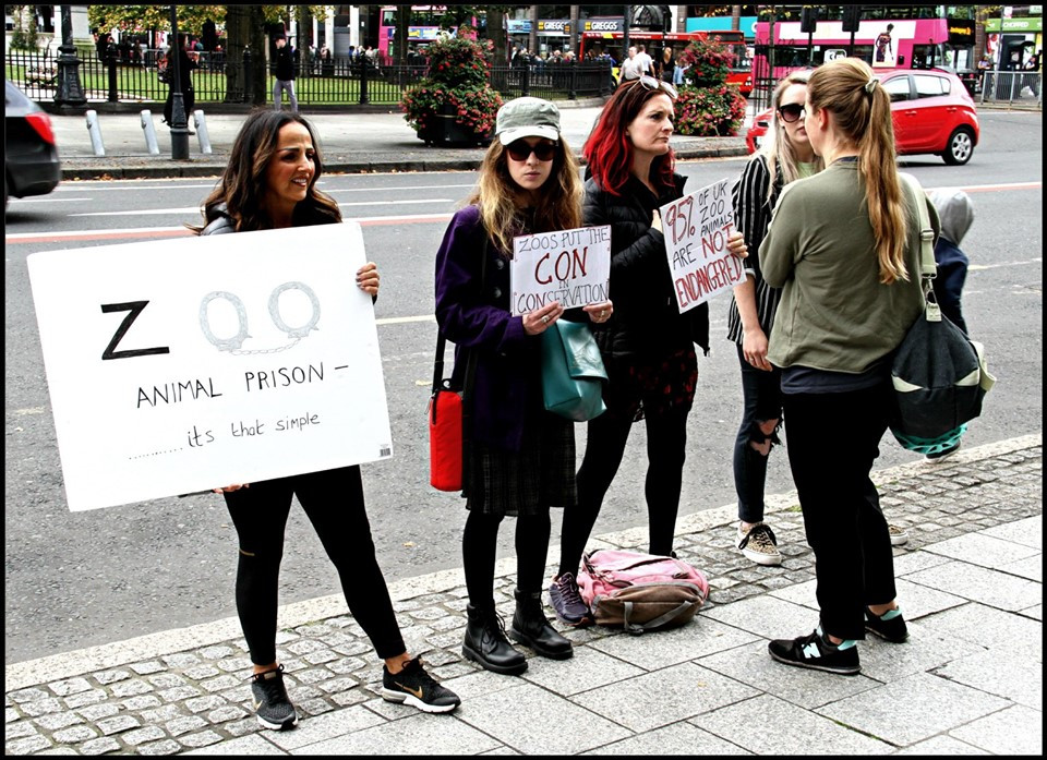 four VKind activists at zoo protest