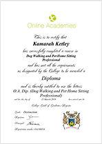 Diploma Certificate 2.jpg