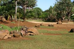 Mauritius 1500x800 28