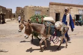 Mali Gallery 34.jpg