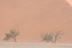 Namibia 1500x800 32