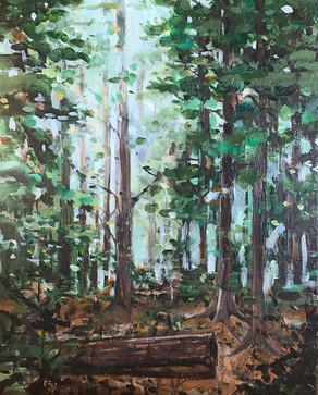 Forest in Mud lake