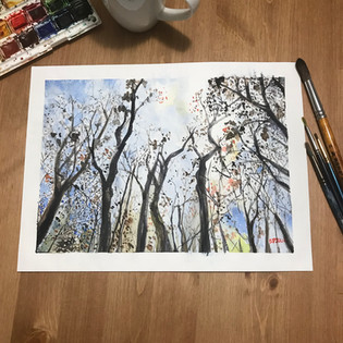 Trees in ink