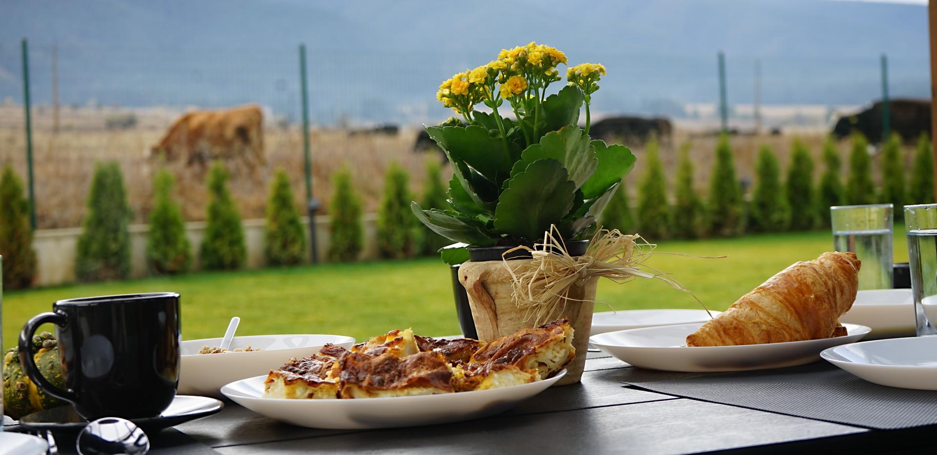 Breakfast at Samovilla