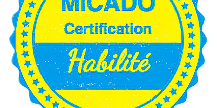Certification - Niveau Habilité