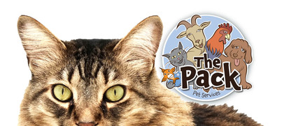ThePack-FB-COVER#cat.jpg