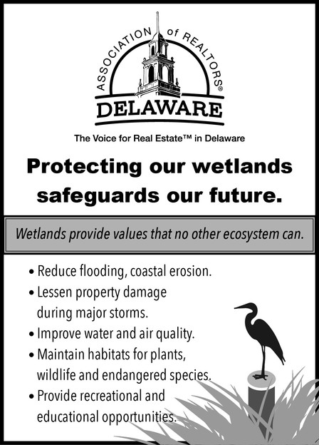 WetlandsAD.jpg