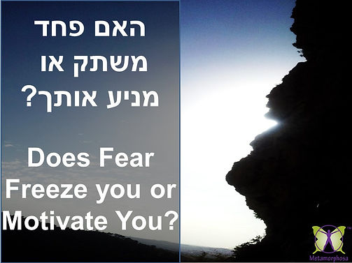 DOES FEAR FREEZE OF MOTIVATE YOU.jpg