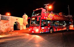 Bus Turistico