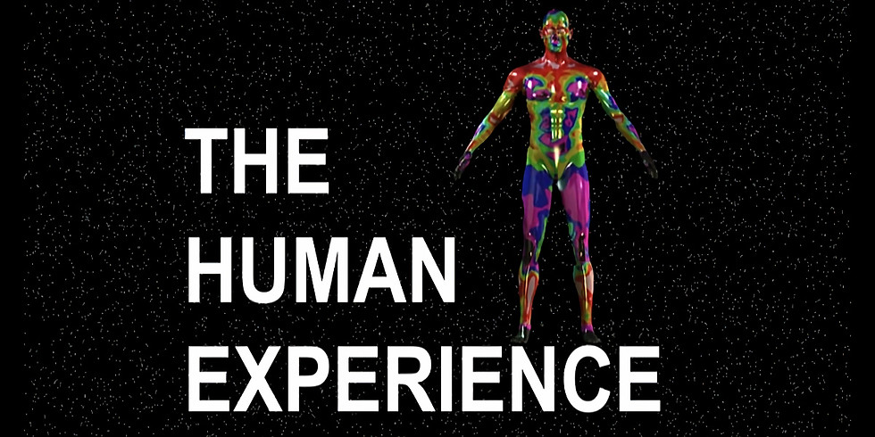 The Human Experience