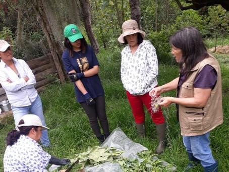 Grupo de estudio y trabajo en agricultura biodinámica en Cundinamarca, Boyacá y Santander