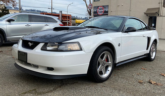 Two Tone Mustang GT