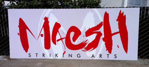 Maesh Striking Arts