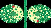 Logo_4_team_0.png