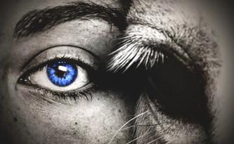 eye to eye.jpg