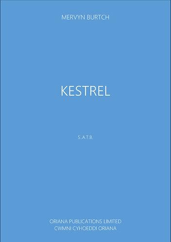 MERVYN BURTCH: Kestrel