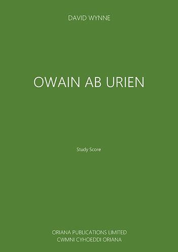 DAVID WYNNE - Owain ab Urien