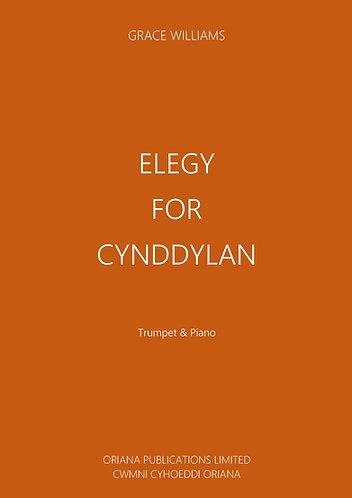 GRACE WILLIAMS: Elegy for Cynddylan