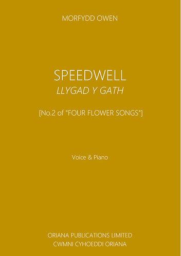 MORFYDD OWEN: Speedwell/Llygad y Gath