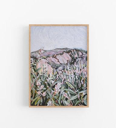 Lavender Mountain   Canvas Print